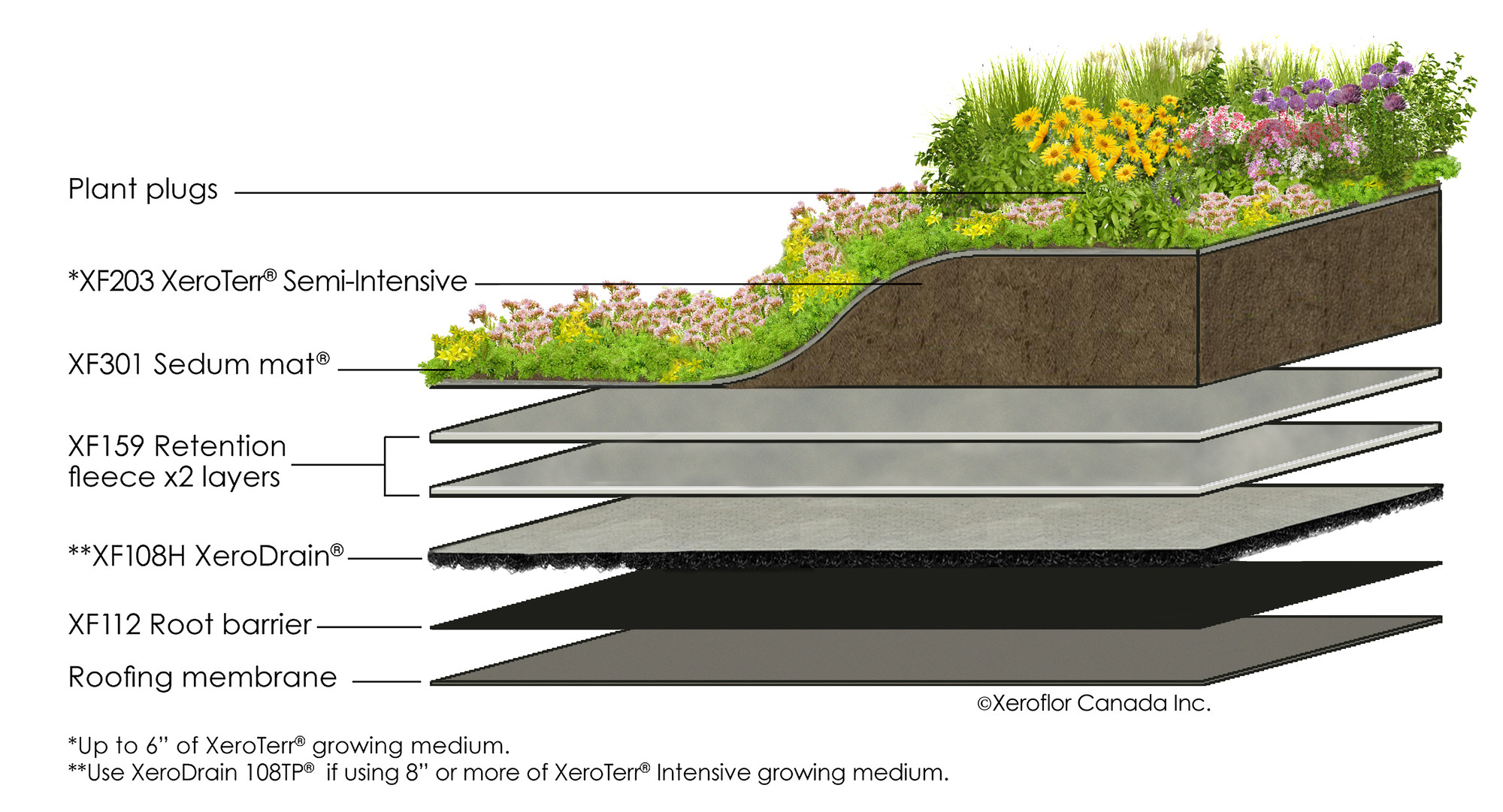 New green roof technology innovative because of its for What does terrace mean