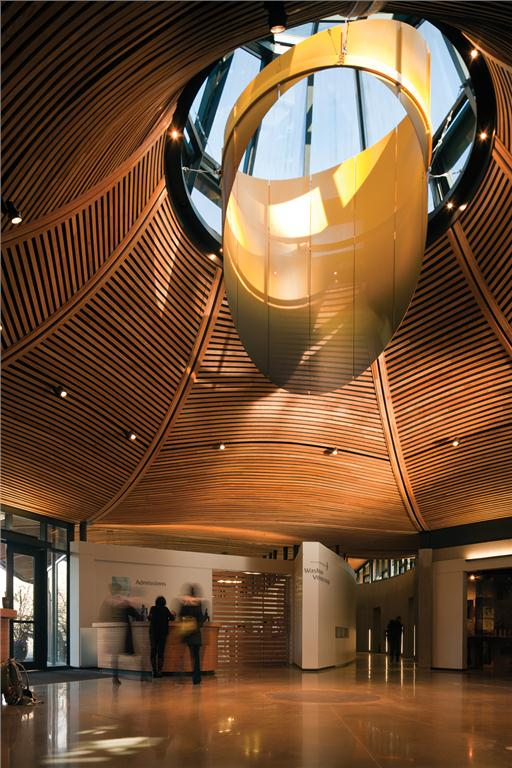 Inspired by flower petals, the undulating wood roof culminates in a central oculus. Nic Lehoux