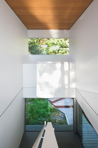 View of forest and ground are framed in the two-storey stairway, while white walls capture the flicker of sunlight through the foliage.