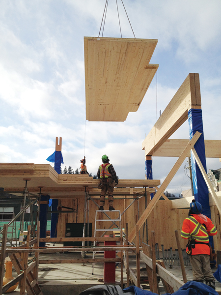 A CLT panel is hoisted into place. Photo courtesy www.naturallywood.com