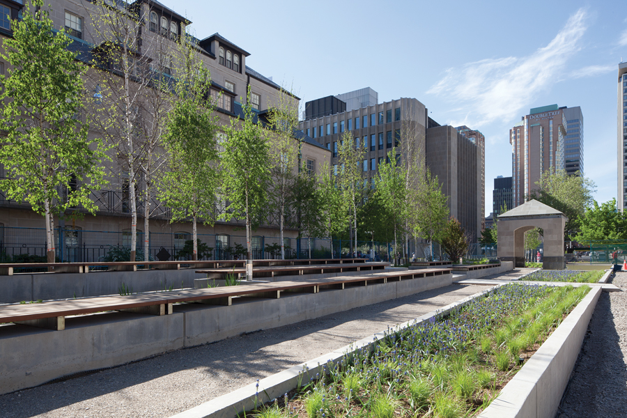 The Peace Garden is in the process of being relocated to the west side of City Hall, freeing up the centre of the square.