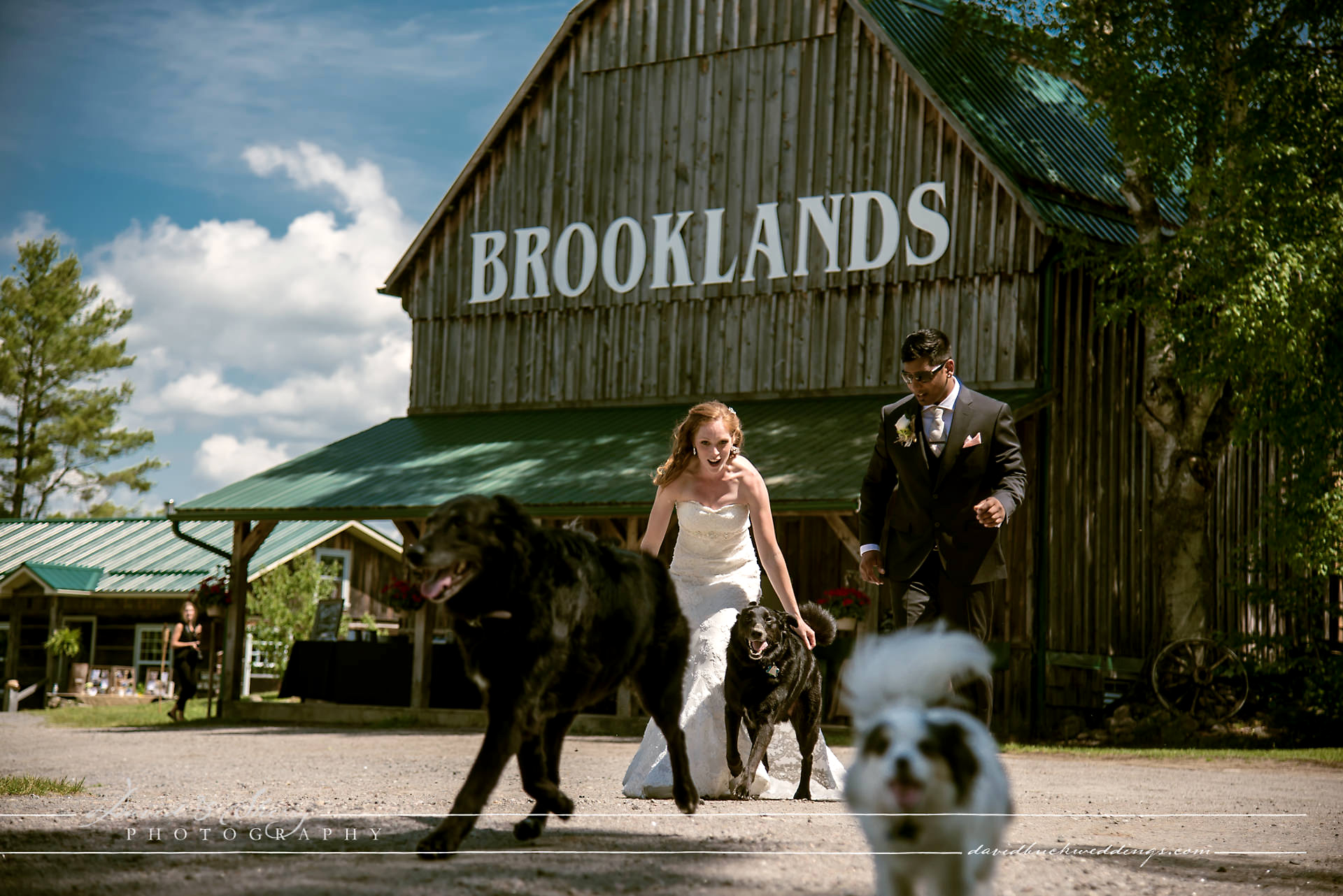 Brooklands_farm_wedding_11