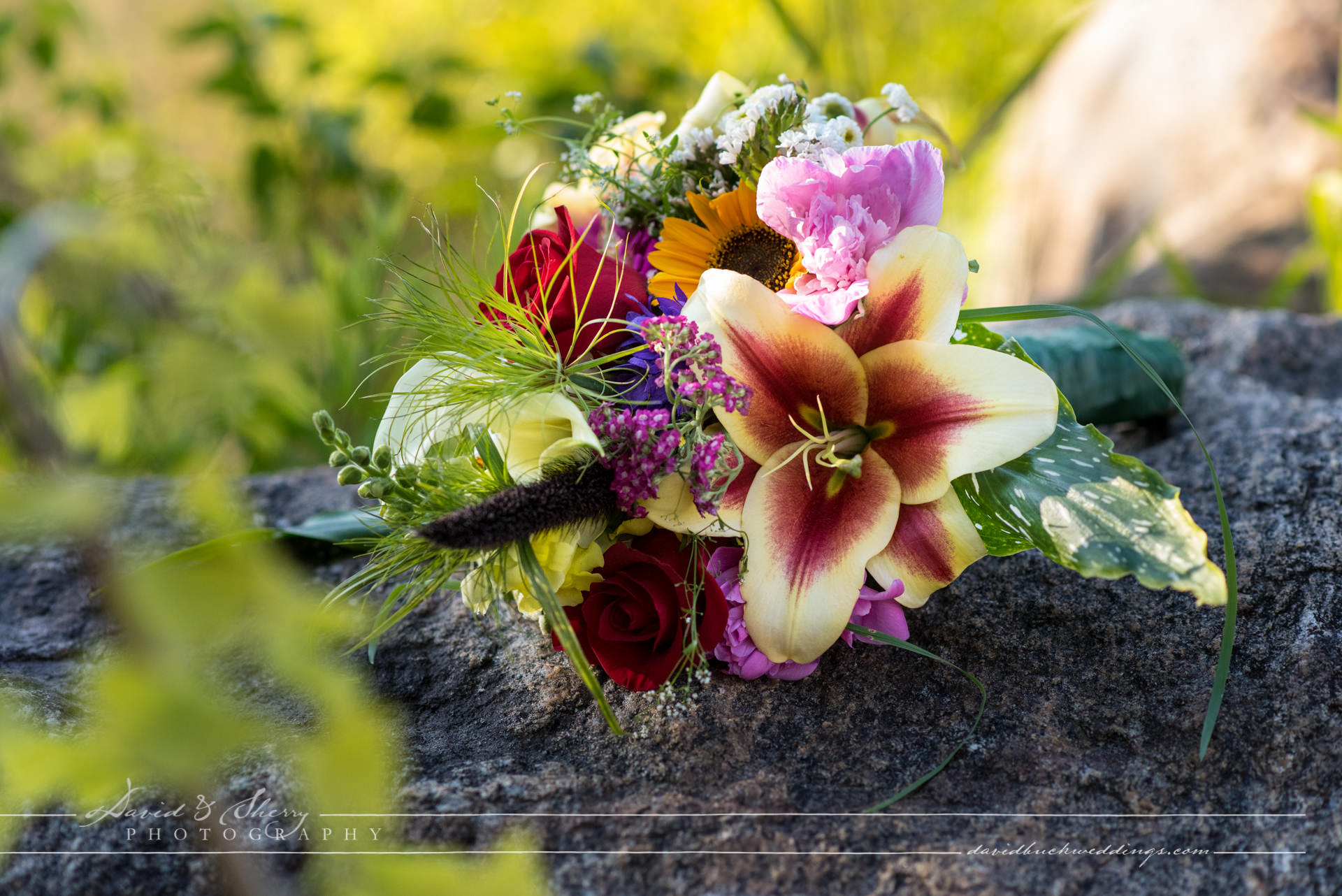 Wiarton_Wedding_Photography_19