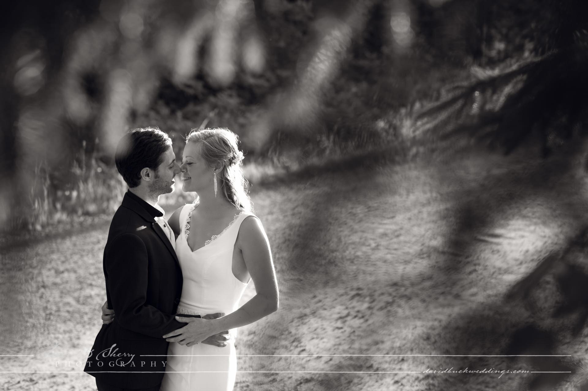 Wiarton_Wedding_Photography_28