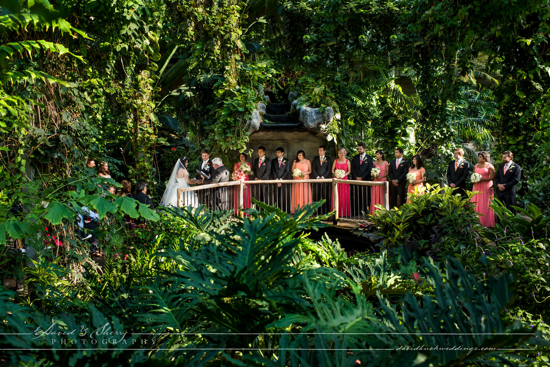 Whistle Bear Wedding Butterfly Conservatory Ceremony Pavel Amp Mariam Blog David Amp Sherry