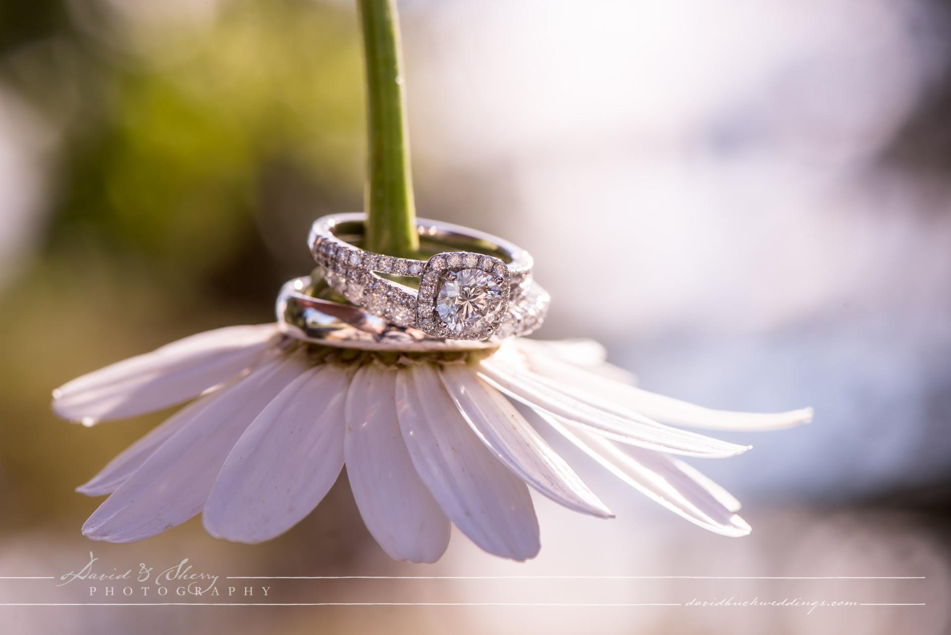 blue-mountain-wedding-016