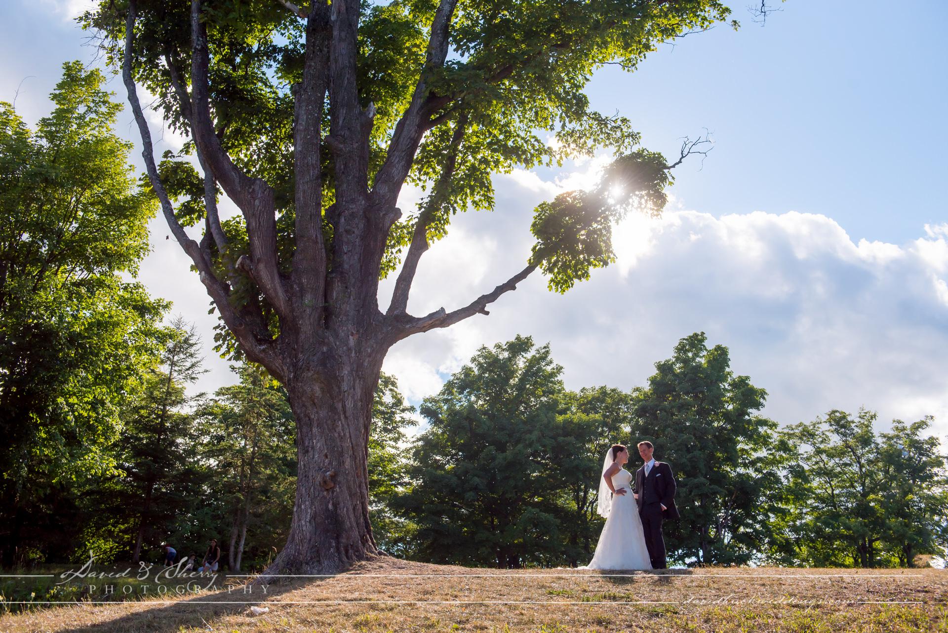blue-mountain-wedding-018