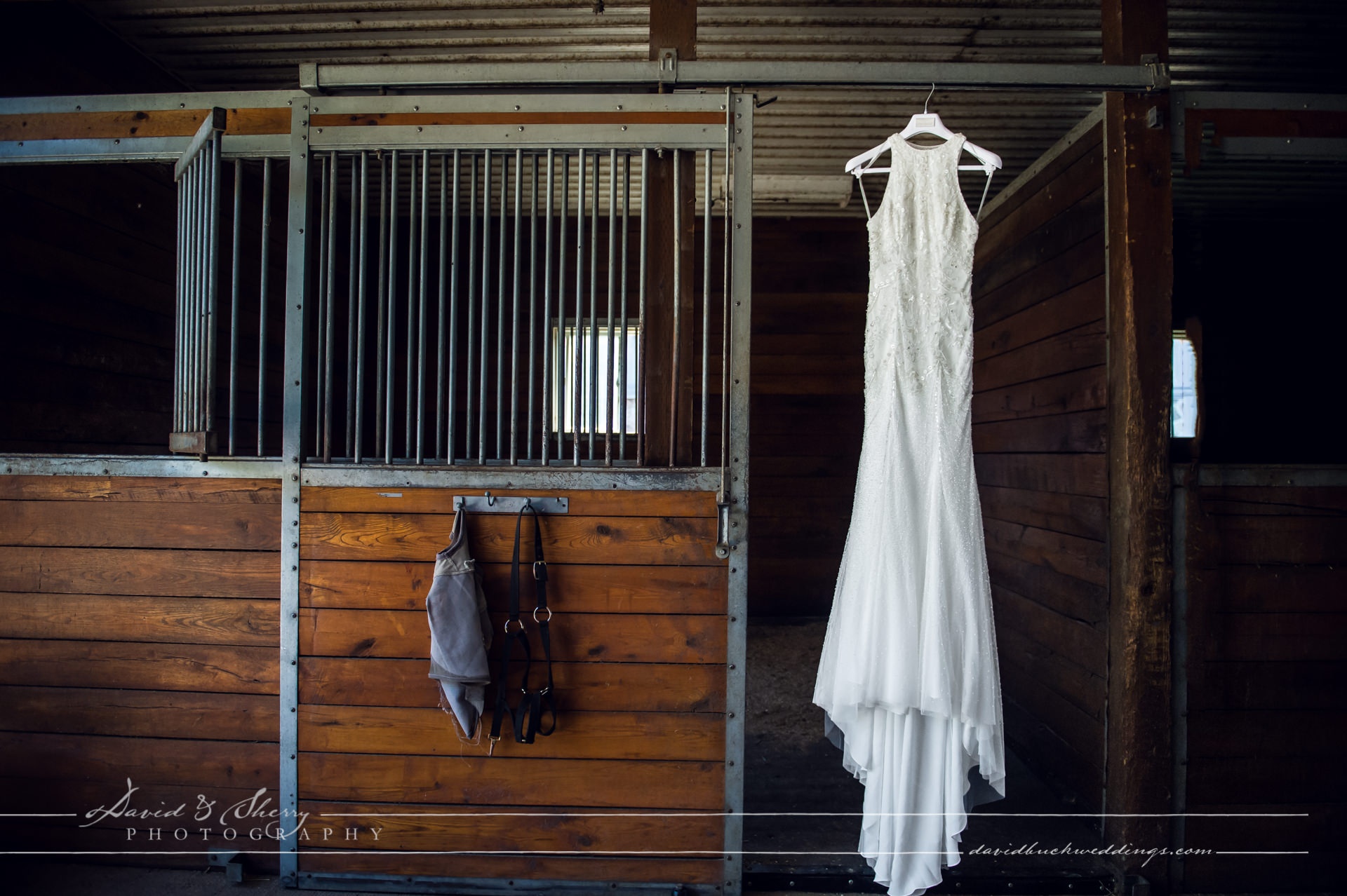 waterstone-estate-wedding-david-sherry-photography-simon-crystal-003