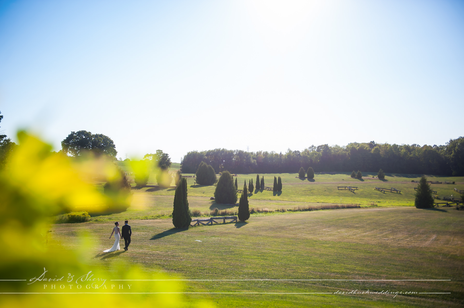 waterstone-estate-wedding-david-sherry-photography-simon-crystal-025
