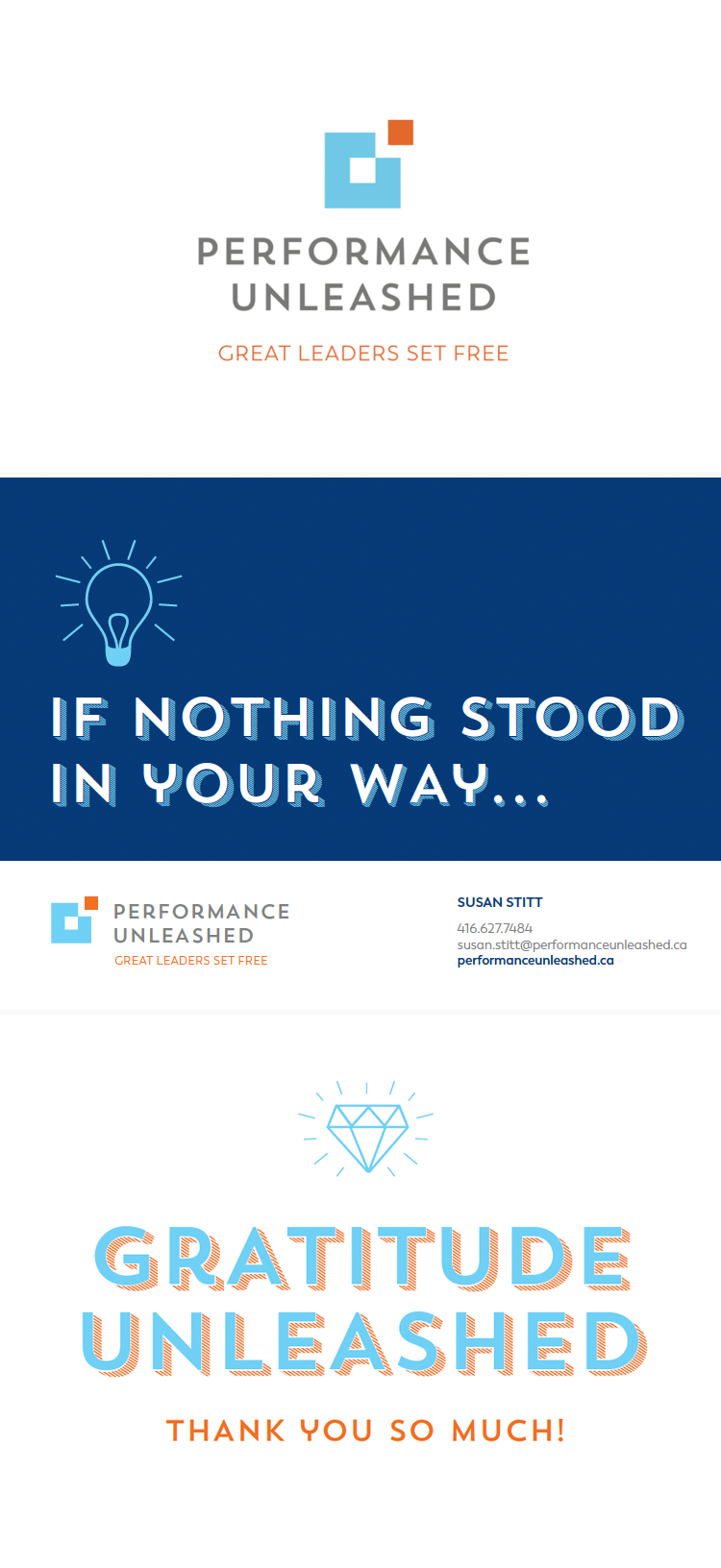 Performance Unleashed Branding