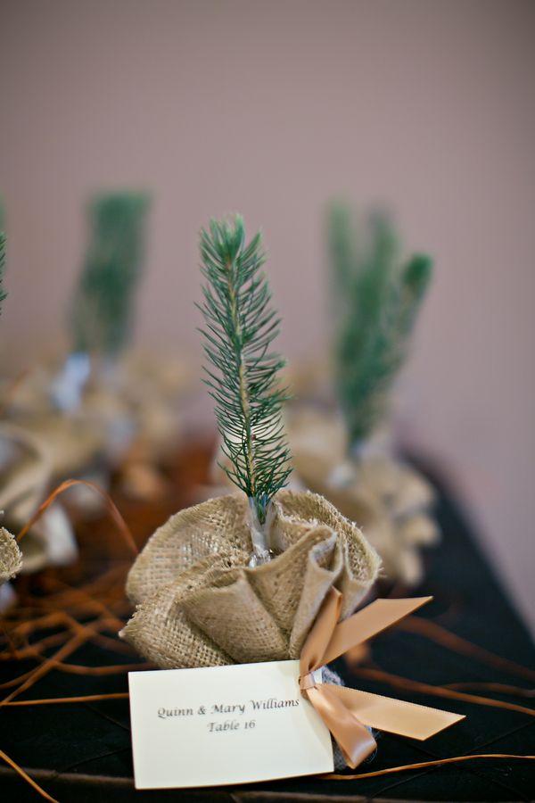 eco-friendly-wedding-favours6