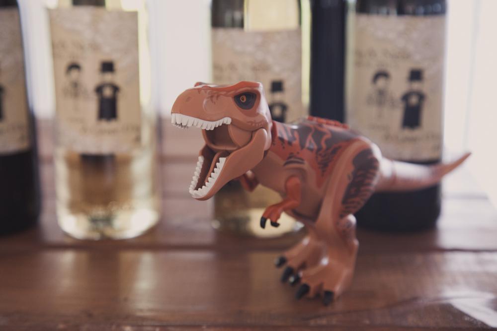 lego-dinosaur-wedding-owen-sound-084