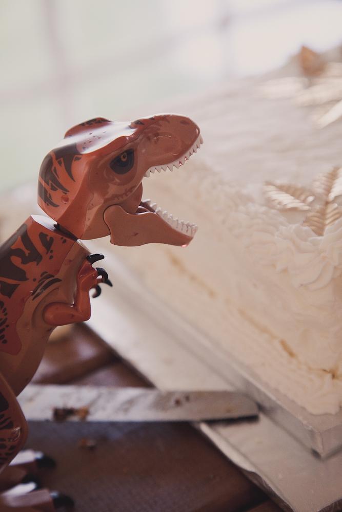 lego-dinosaur-wedding-owen-sound-090