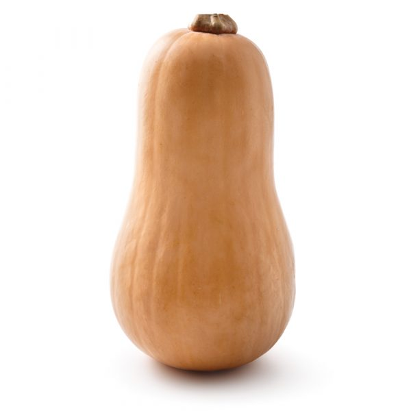 Courge musquée