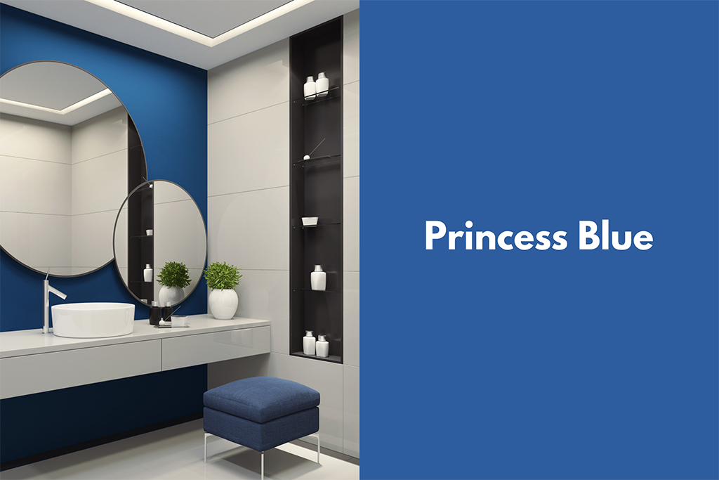 Pantone Princess Blue