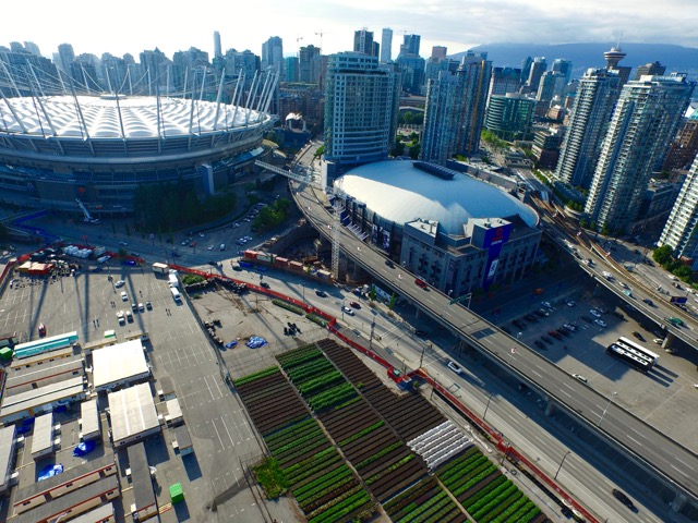agrihoods. The BC Place location is the largest of Sole Food Farms' four sites in Vancouver, totalling two acres and tended to mostly by residents of the Downtown Eastside. Photo courtesy of Michael Abelman.