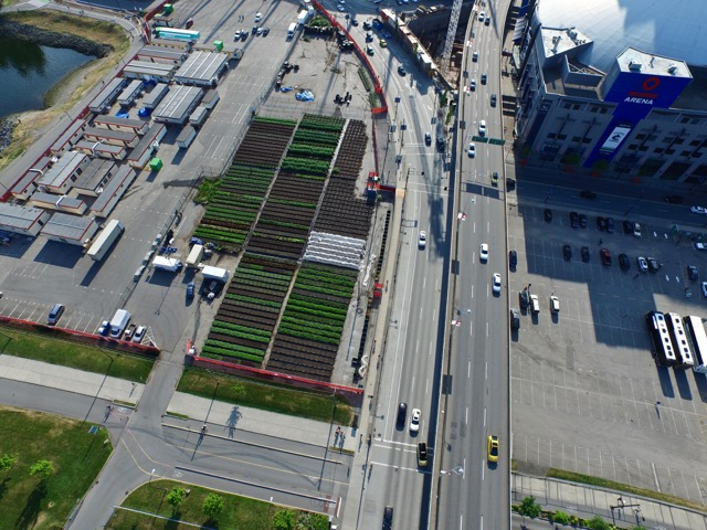 Aerial view of Sole Food Farms at BC Place. Photo courtesy of Michael Abelman.