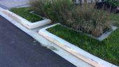 Wychwood Rain Garden - Credit Valley Conservation - Stormwater