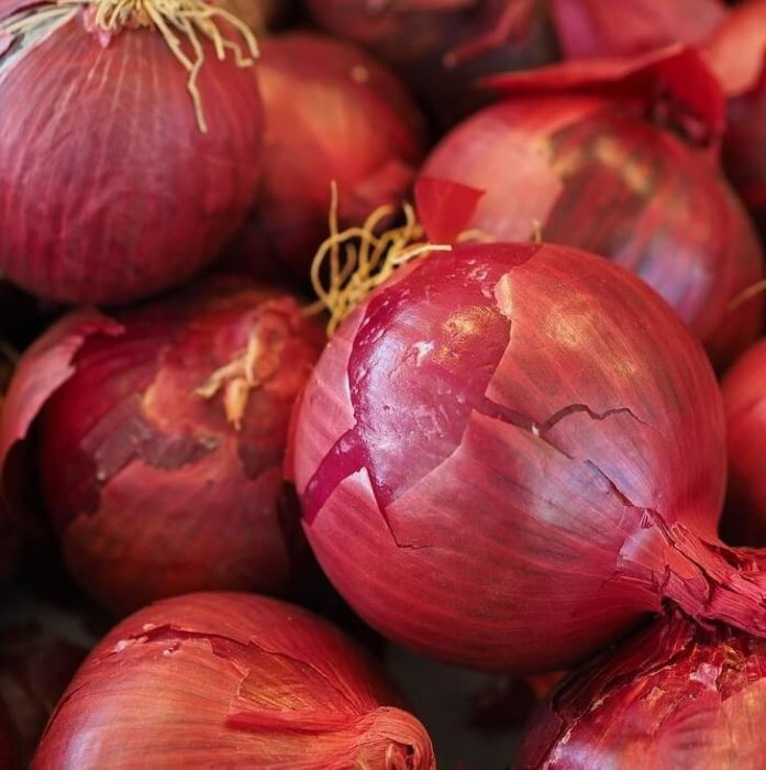 sell local food online red onion