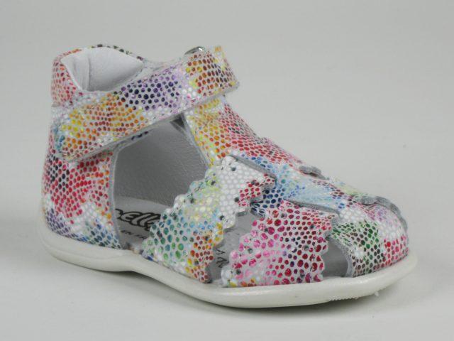 Bellamy GLORY 002 Multicolore