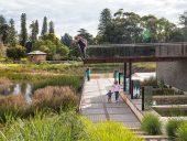 TCL Urban Wetland, Adelaide, Australia