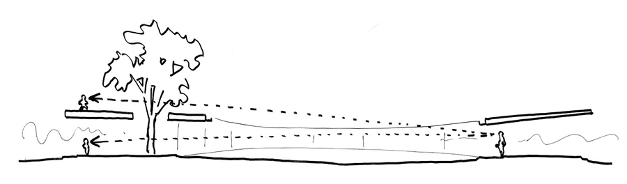 Concept sketch illustrating low ceiling height and sightlines. Drawing courtesy of Tezuka Architects