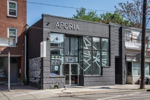 Aporia Records, Toronto, PLANT Architect
