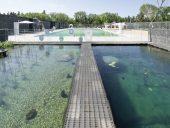 Borden Park Natural Swimming Pool, Edmonton, gh3*