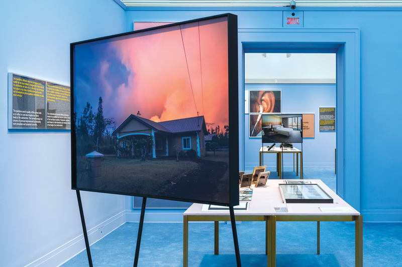 Exhibition Review: Our Happy Life