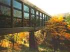 Bridge at the Ontario Science Centre.