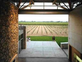 A view of the vineyard from the bridge in the Great Hall.