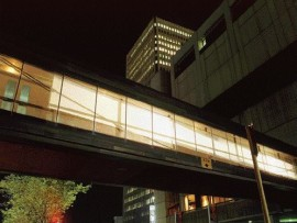 Scrim, an intervention on Calgary's Plus 15 public walkway system, was exhibited for two weeks as part of Calgary's Art City in September, 2002.