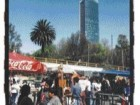 the gleaming Torre Mayor designed by the Zeidler Partnership stands in sharp juxtaposition to the clusters of vendors and shop owners lining the streets of Mexico City.