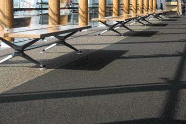 Highly Expressed Tectonic Quality of the Wood and Steel Benches Mimics the Structure of the Building.