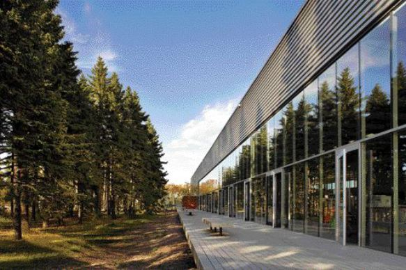 Fully Openable Glazed Wall Blurs the Interior/Exterior Distinction and Connects Employees to the Sensory Delights of the Tall Pines Running Alongside the Expansive Deck.