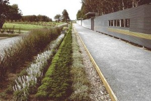 Linear Rows of Plantings Along the Major Landscape Spine With the Continuous Length of the Perforated Metal Screen Beyond.