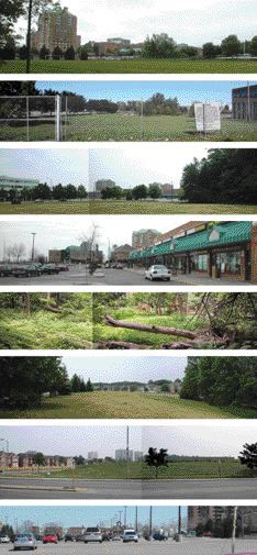 A Series of Images Representing the Neighbourhood Context of the Malvern Community.