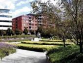 A Panoramic View of Jardin De Saint-Roch Bounded by the Tluq/Universit Du Quebc Building and Condominiums.