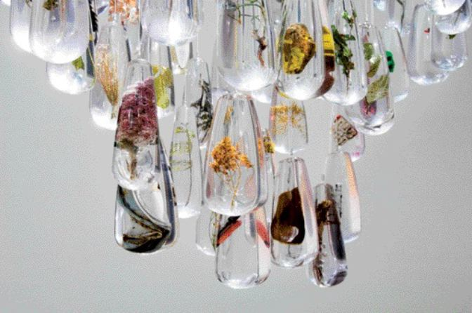 A chandelier is made of teardrop-shaped acrylic specimen cases holding a diversity of plant life along with the detritus of human consumption in Gilles Clment's installation, part of the Environment: Approaches for Tomorrow exhibition at the CCA.