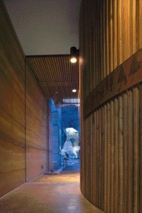 Lining the Exhibit Gallery With Pine Contrasts Against the Rammed Earth and Polished Concrete Flooring in the Cultural Centre