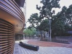 BUILT AROUND THE NATURAL MONUMENT OF A 520-YEAR-OLD TREE, A SMALL PLAZA HAS PROVEN TO BE A POPULAR PUBLIC SPACE WHILE STILL MAINTAINING SUFFICIENT DIPLOMATIC SECURITY.