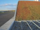 The steep incline of the sedum mats covering the roof of the Kastrup Peak Load Plant in Copenhagen.