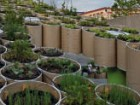 Work Architecture Company's Public Farm 1 has transformed sections of cardboard tubes into planters for vegetables, herbs and fruit.