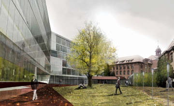 The New Buildings Design Was Heavily Influenced By An Existing Ginkgo Tree In Courtyard