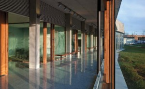 Sliding wood-and-glass panels create an opportunity for the school to open directly onto its new sheltered courtyard.