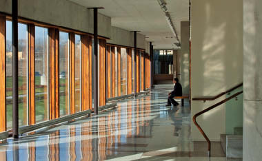 Undulating exterior walls overlook the courtyard to provide a cloistered environment inside the new school.