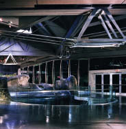 Working with Gerry Epp, Thom developed the elegant structural system for the expansion to the Vancouver Aquarium. Martin Tessler