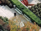 The sophisticated rooftop landscape designed by Cornelia Hahn Oberlander. Greg Richardson