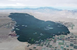 Lateral Office's examination of an improved water management infrastructure in Salton City, California. Lateral Office