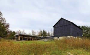 The new residence is strategically sited in close proximity to the original barn to link the site's history with the identity of the new architecture.